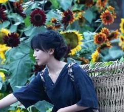 中国女孩将田园生活搬上荧屏,让世界看到中式生活的美好